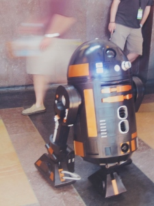 R2-D2...or some similar R2 unit